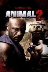 Animal 2