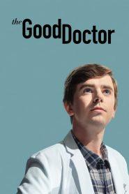 Good Doctor: Saison 5