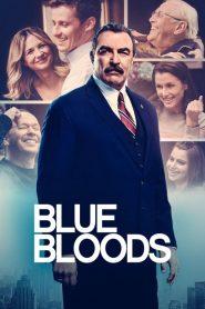 Blue Bloods: Saison 12